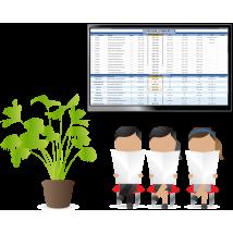 Медиаконтент и электронное расписание